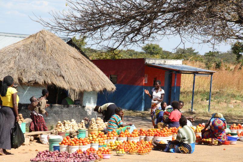 Tomato traders.jpg