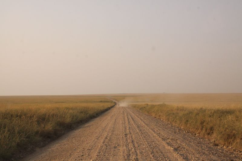 Serengeti pad 1.jpg